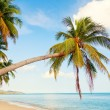 Koh Samui beach — Stock Photo #62435175