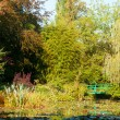 Monet's water lily pond in Giverny — Stock Photo #63276977