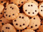 Homemade cocoa cookies — Stock Photo