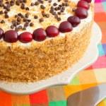 Homemade cake with cherries — Stock Photo #63370165