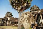 Angkor Wat, Cambodia — Stok fotoğraf