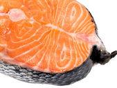 Salmon Steak (unprepared) — Stock Photo