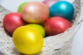 Easter colored eggs in a white basket — Stock Photo