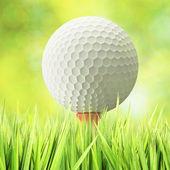 Golf concept — Foto Stock