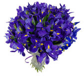 Bouquet of irises in package — Stock Photo