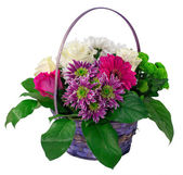 Basket of flowers and greens — Stock Photo
