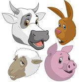 Farm animal  heads — Stock Photo
