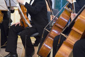 The concert of the classical music — Stock Photo