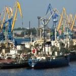 Sea trading port — Stock Photo #52802743