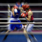 Boxing on a ring — Foto de Stock
