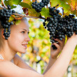 Beautiful young blonde woamn harvesting grapes in vineyard — Stock Photo #63625079