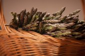 Fresh wild asparagus on a basket ready to be cooked — Stock Photo