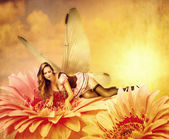 Woman pixie lies on a summer flower — Stock Photo