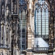 The cathedral of Cologne. Detail from facade — Stock Photo #52275861