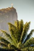 View of Christ Redeemer and Corcovado Mountain  — ストック写真