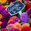 ������, ������: Colorful bouquets of dahlias flowers at market in Copenhagen Denmark