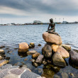 The Little Mermaid is a bronze statue by Edvard Eriksen, depicting a mermaid. The sculpture is displayed on a rock by the waterside at the Langelinie promenade in Copenhagen, Denmark — Stock Photo #53023155