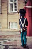 COPENHAGEN, DENMARK -SEPTEMBER 8:Royal Guard guarding Amalienborg Castle on September 8, 2014 in Copenhagen, Denmark. The Royal Guards is a regiment of the Danish Army, founded in 1658 by King Frederi — Stock Photo
