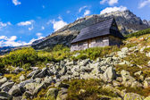 Summer in 5 lakes valley in High Tatra Mountains, Poland. — Stock Photo
