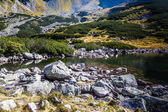Mountain lake in 5 lakes valley in Tatra Mountains  — Foto Stock