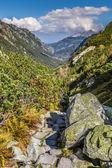 Blick auf Tatra-Gebirge vom Wanderweg. Polen. Europa. — Stockfoto