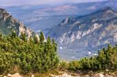 View of Tatra Mountains from hiking trail. Poland. Europe. — Stock Photo