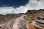 Bizarre ancient rocks of the plateau Roraima tepui - Venezuela, Latin America  — Stock Photo