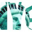 The Statue of Liberty at New York City — Stock Photo #56571035