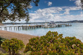 Landscape from Russell near Paihia, Bay of Islands, New Zealand — Foto Stock