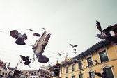 Bodhnath Stupa mit fliegenden Vögel bei blauem Himmel im Kathmandu-Tal — Stockfoto