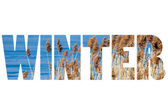 Word WINTER over traditional Polish landscape. — Stock Photo