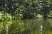 Kayaking on the Rospuda river, Poland — Stock Photo