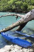 Typical Vanuatu boat - Blue Hole  — Zdjęcie stockowe