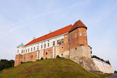Sandomierz Royal Castle — Stock Photo
