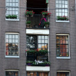 Every balcony must have a flower basket — Stock Photo #54238863