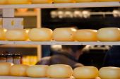 Cheese shop shelves in Amsterdam — Stock Photo