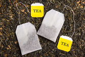 Close up of background with dried tea and two tea bags — Stock Photo