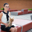 Girl sitting with dog yorkshire terrier in park — Stock Photo #78710702