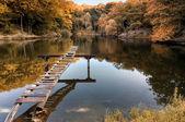 秋天的风景。在秋天的公园 — 图库照片