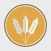 Wheat icon  — Stock Vector
