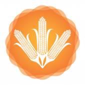 Maize icon, agricultural concept — Stock Vector