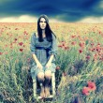 Woman in poppy field — Stock Photo #52017805