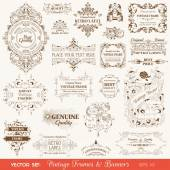 Vector Set: Vintage Frames and Banners, Calligraphic Design — Stock Vector