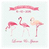 Save the Date - Wedding Card with Flamingo Birds - in vector — Stock Vector