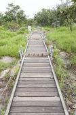 Walkway bridge to mountain — Stock Photo