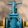 The gas supply valve — Stock Photo #53433781