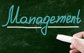 Management concept — Stock Photo