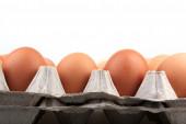 Eggs - Color Image — Stock Photo