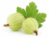 Green gooseberry with leaf on white — Stock Photo