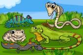 Reptiles and amphibians group cartoon — Stock Vector